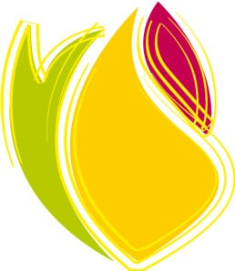 création logo Praud Élec