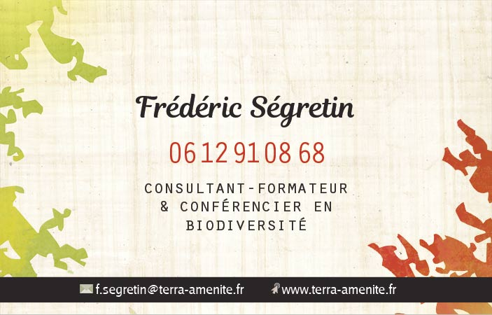 Exemple de carte de visite recto