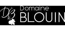 Logo Domaine Blouin